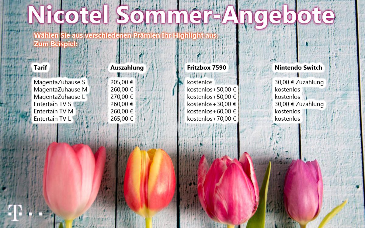 Sommer_Nicotel_2018